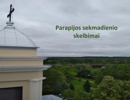 AKTUALIEJI PARAPIJOS SKELBIMAI (07-05)